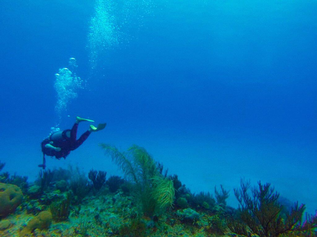 Buceo. Colombia