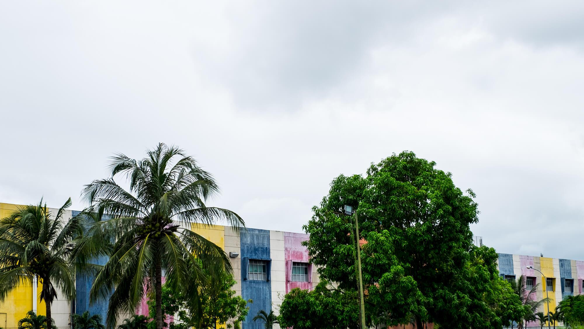 Vegetación invade edificios en Manado, Sulawesi, Indonesia