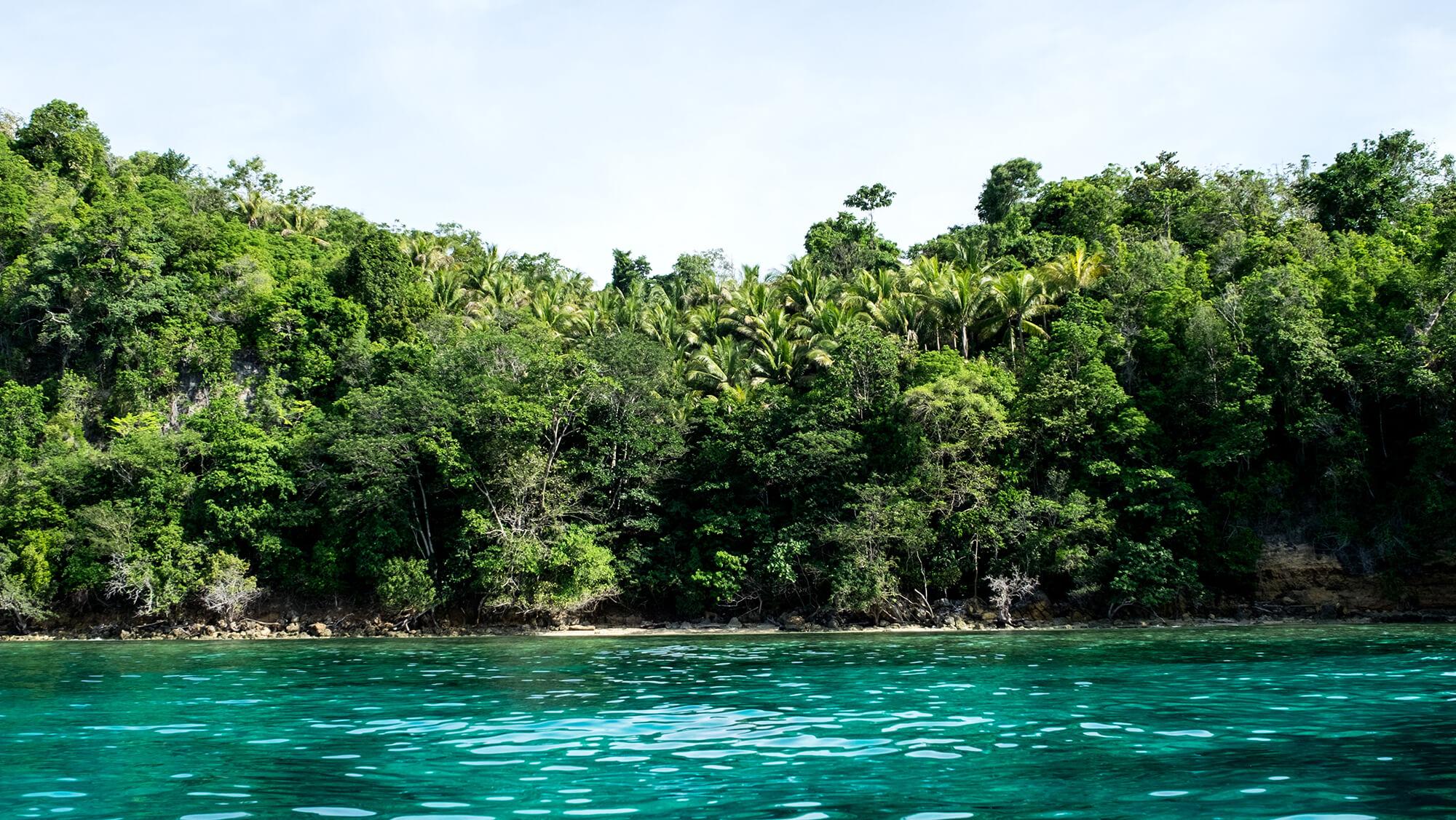 Paraísos tropicales en la isla de Malenge en las Togean Islands de Sulawesi