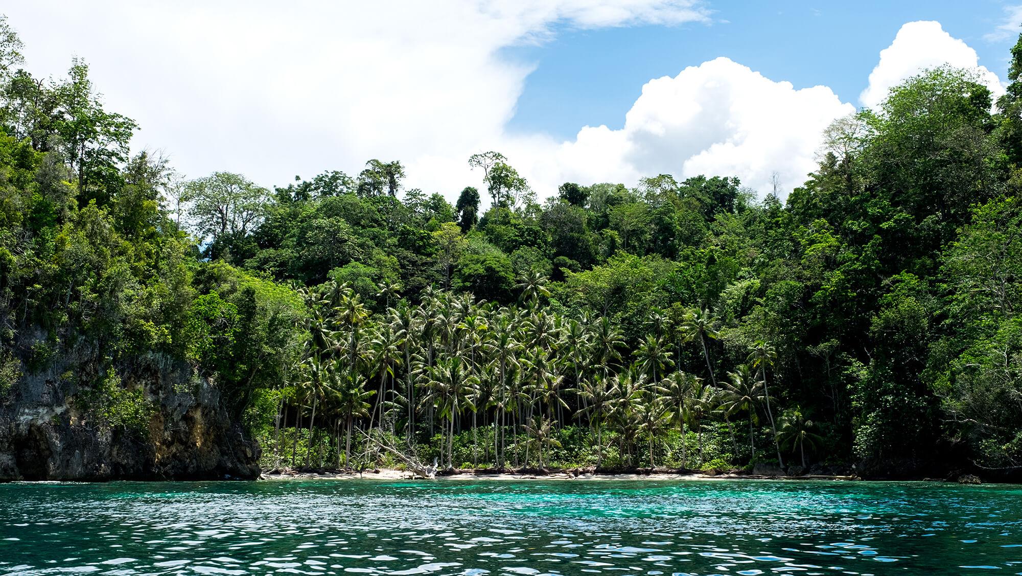 Playa Virgen en las islas Togean de Sulawesi
