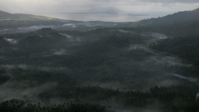 Selva frondosa sobrevolando Papúa a vista de pájaro