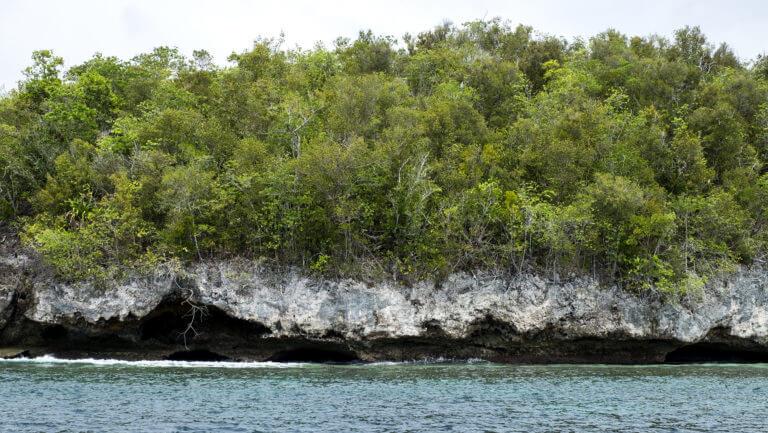 Islotes de Piedra caliza en el acrchipiélago de Raja Ampat en Papúa