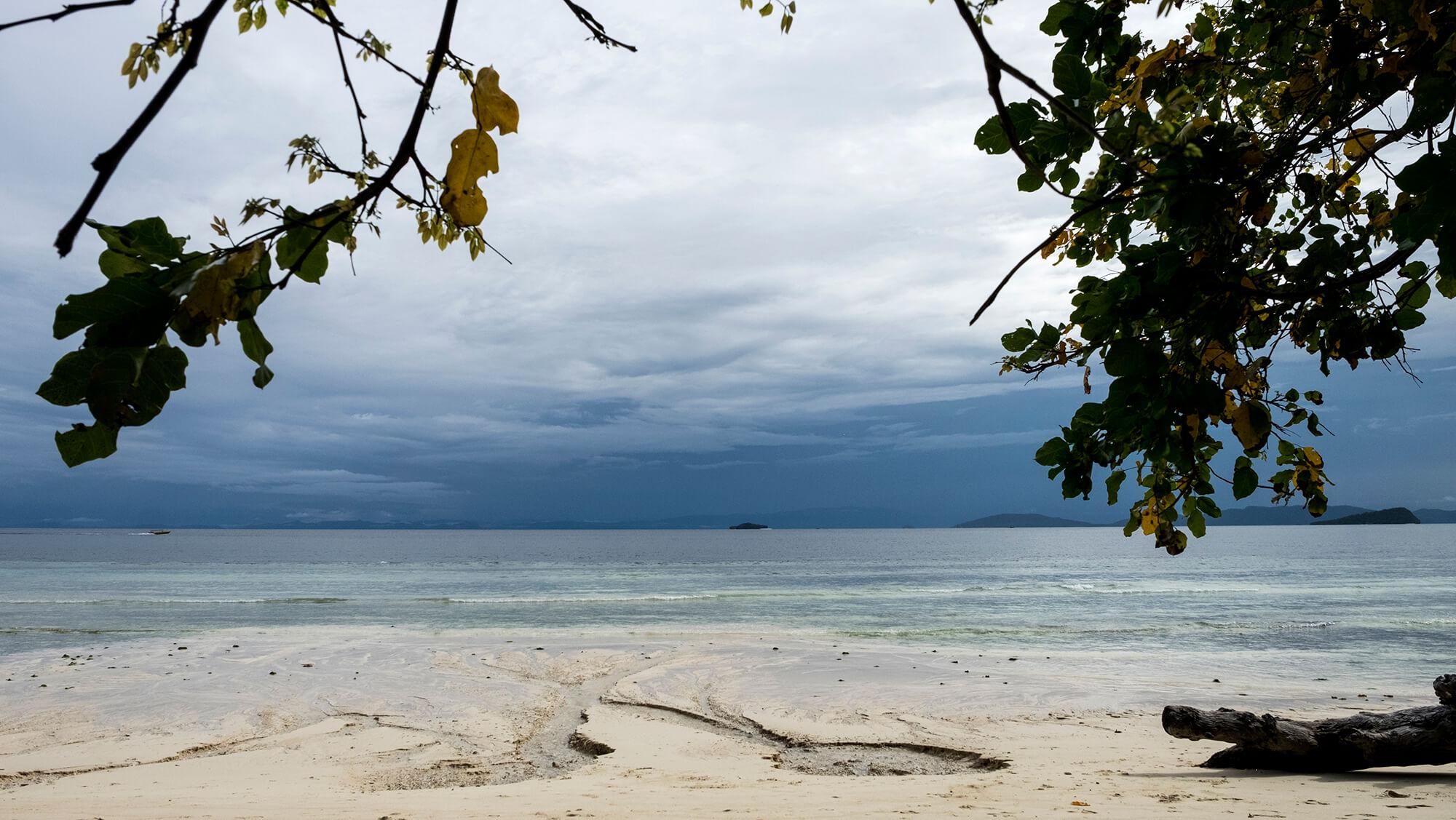 Playa en medio de la jungla de Raja Ampat en Papúa, Indonesia