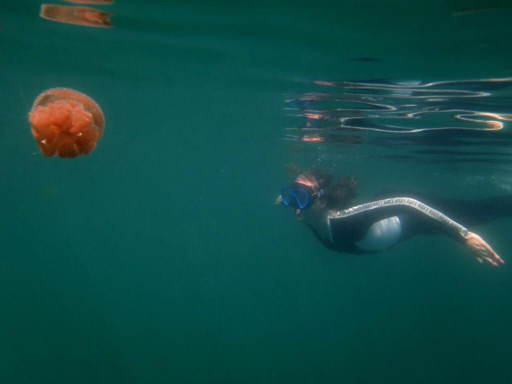 Nadar entre medusas en las islas Togean