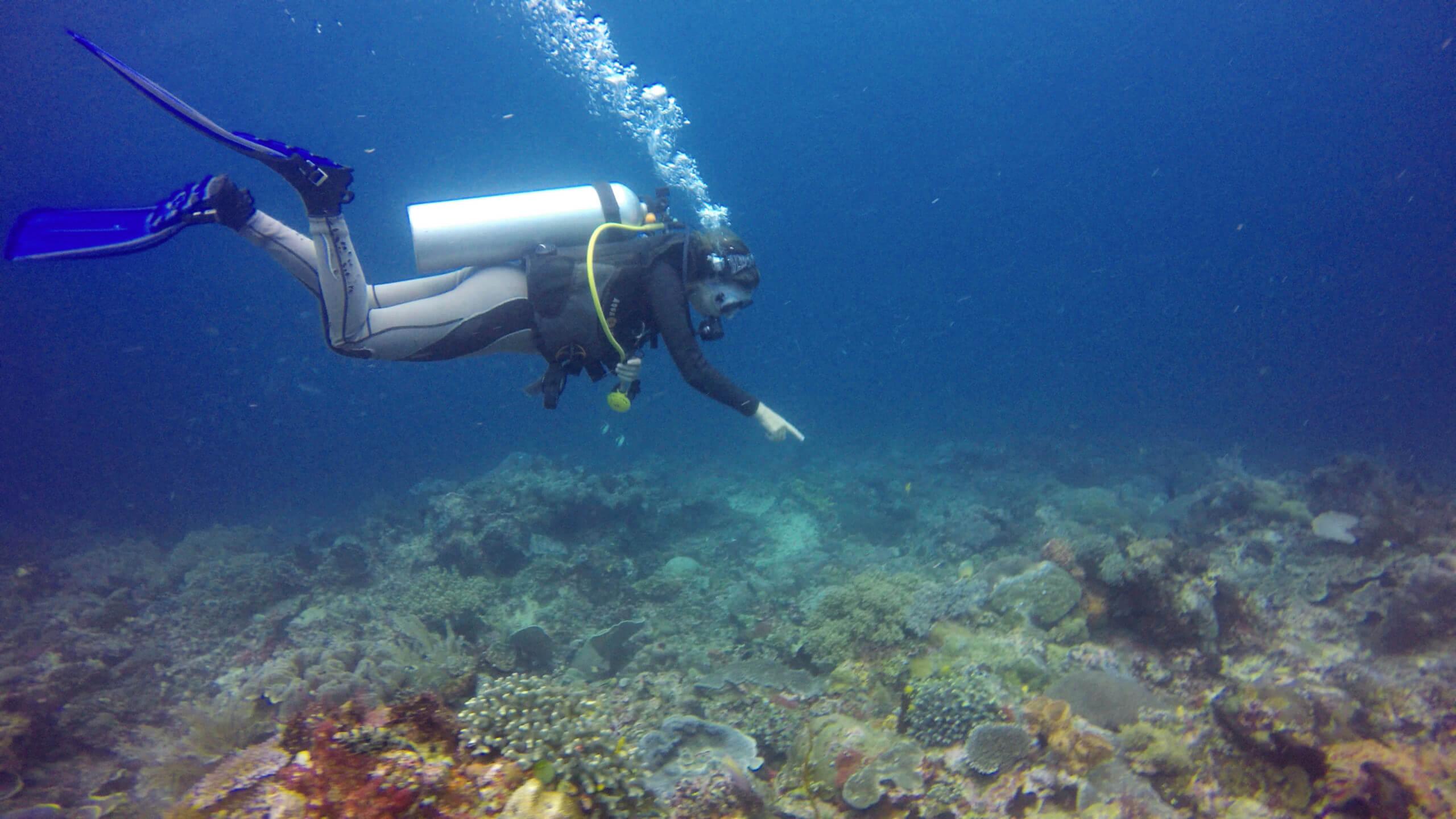 Buceo extraordinario en el paraíso submarino de Raja Ampat en Papúa