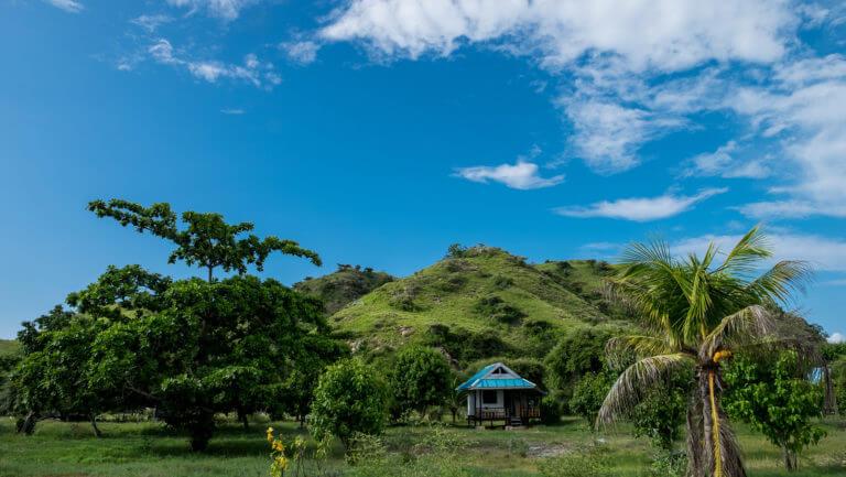 Panorámica en verde de la isla de Flores en Indonesia
