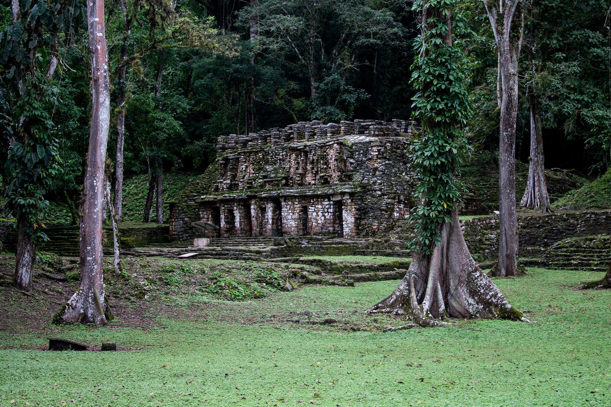 Las ruinas mayas de Yaxchilán en plena selva